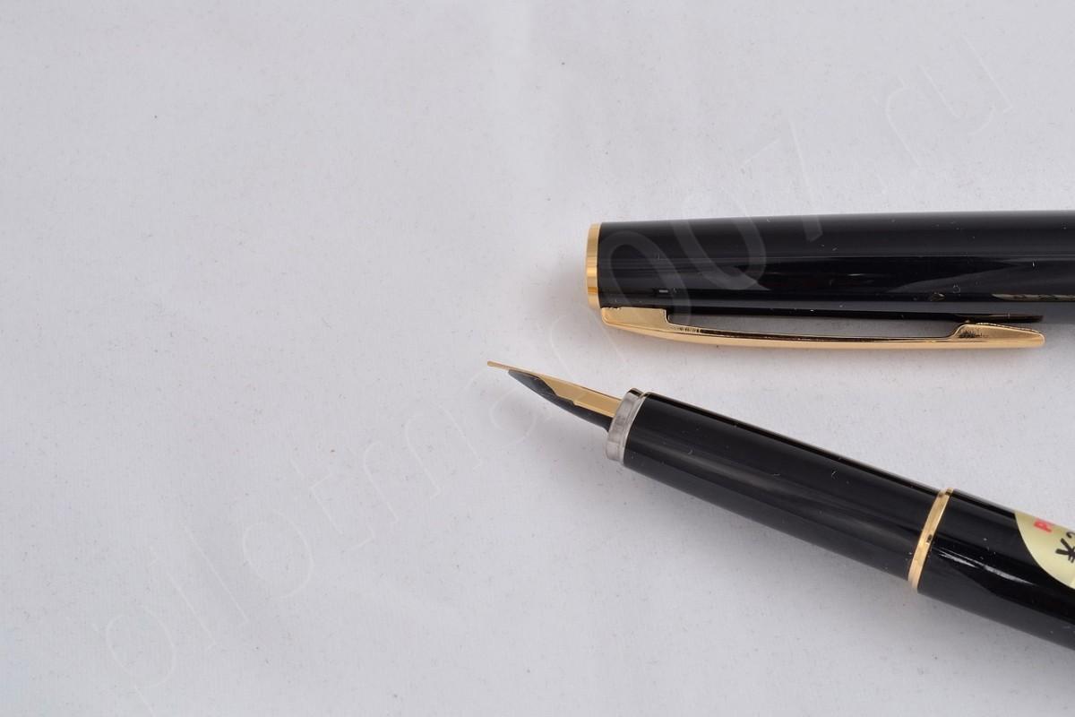 Pilot Fountain Pen FNYR-300R