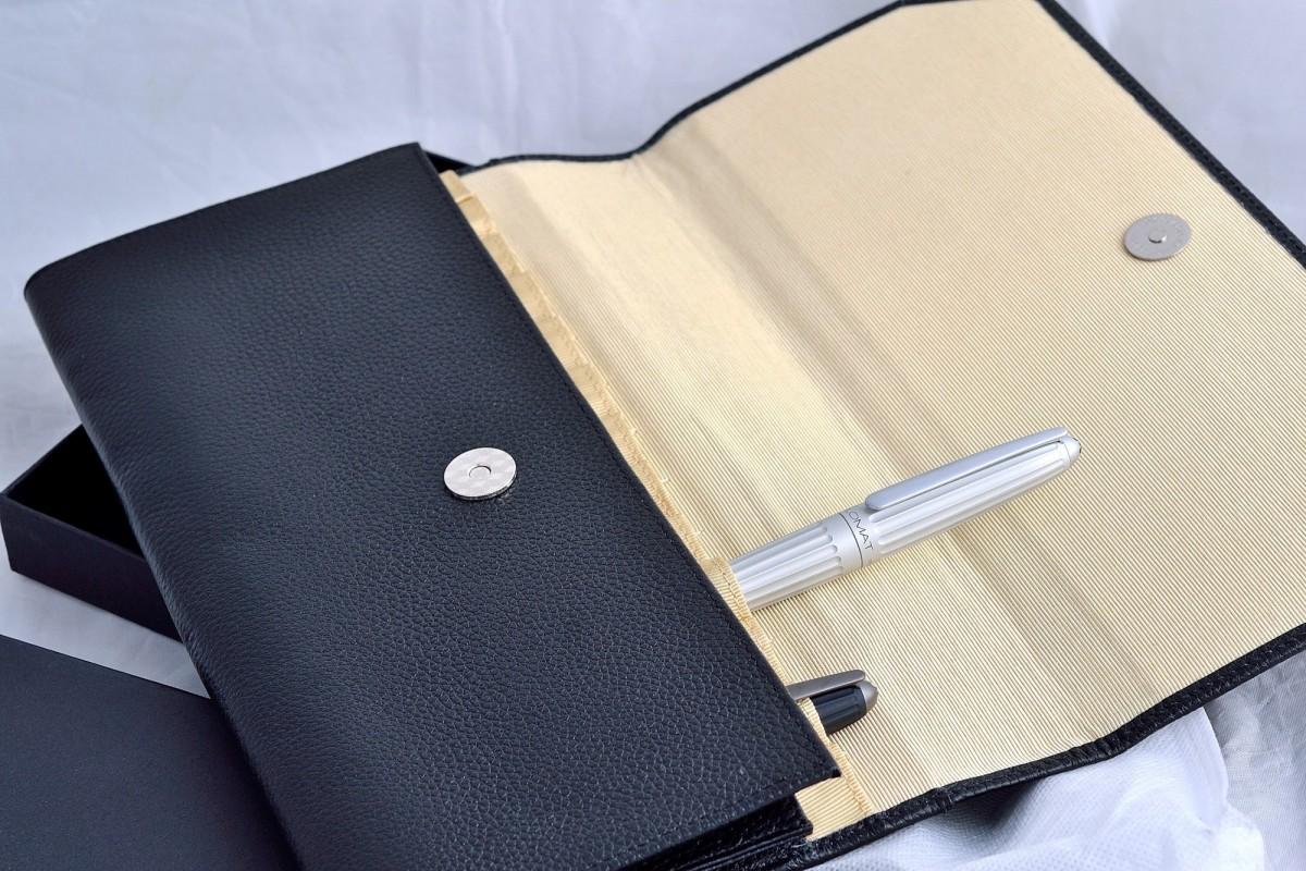 XTAO папка - чехол для ручек 21PS-G.